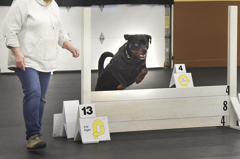 Cape Breton Kennel Club Dog Show