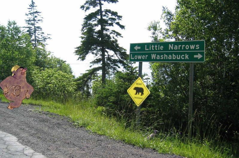Along the Shores of Washabuck