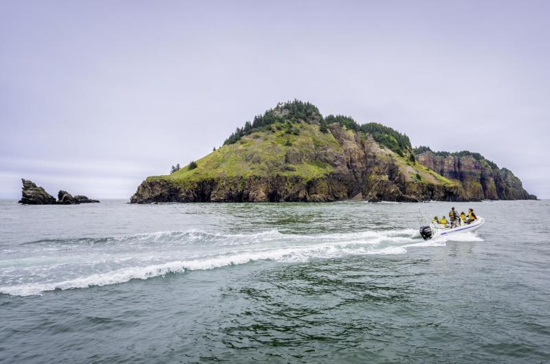 Bay Of Fundy Camping >> Your Own Island: A Bay of Fundy Camping Adventure ...