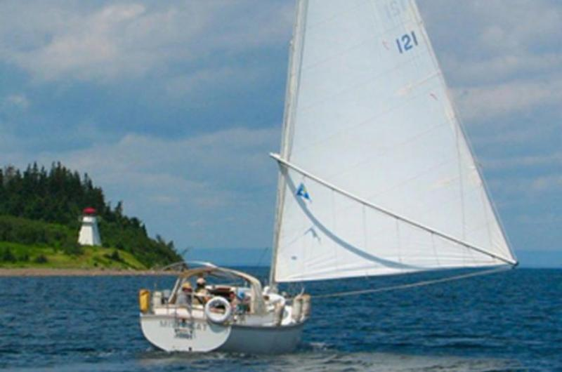 Stay and Sail: Half Day Group Cruise
