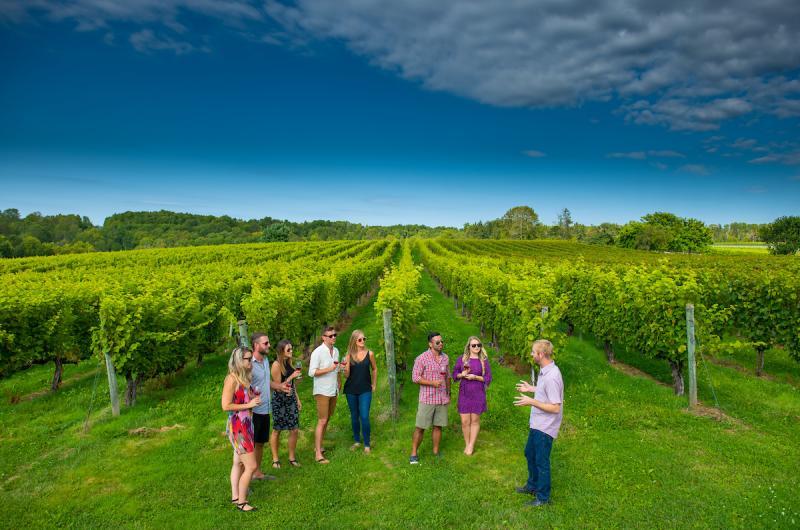 Avondale Sky Wine Lab Adventure @ Avondake Sky Winery | Newport | Nova Scotia | Canada