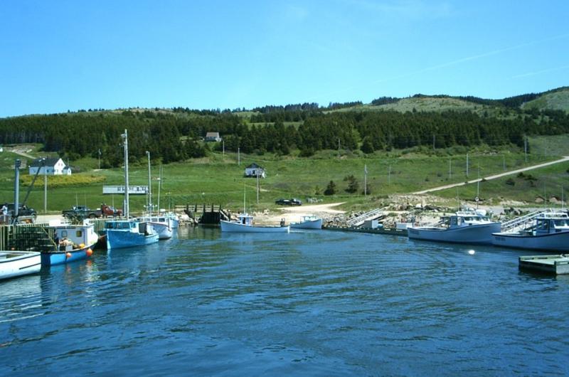 Ceilidh on the Wharf