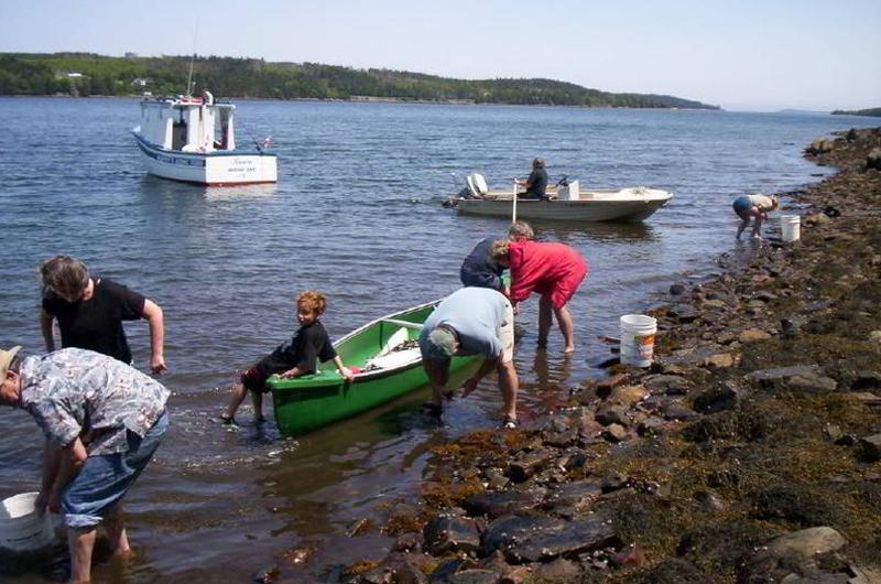 Bay Of Fundy Camping >> Murphy's Camping on the Ocean   novascotia.com